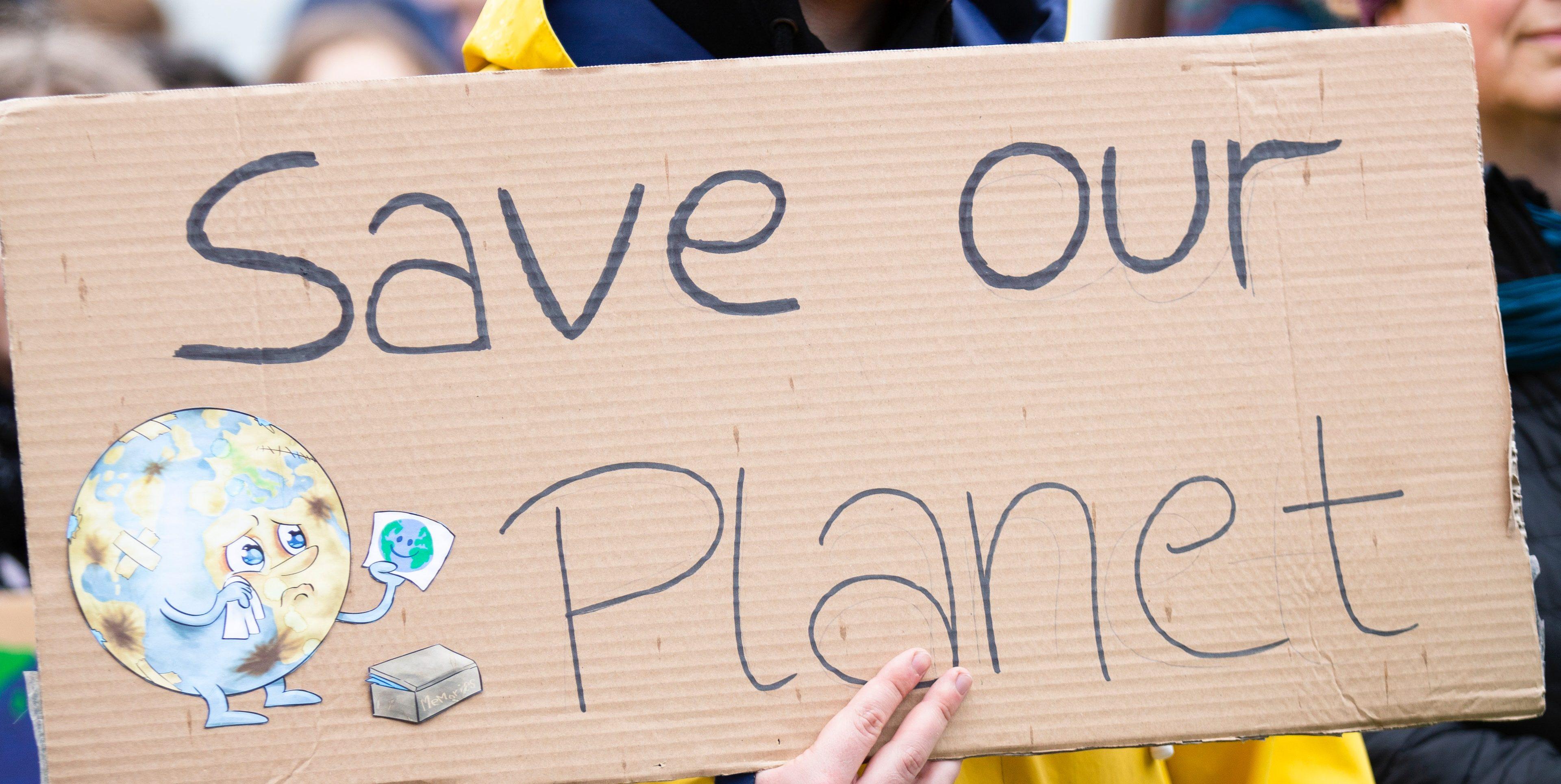 fridays for future, cambiamenti climatici, manifestazione